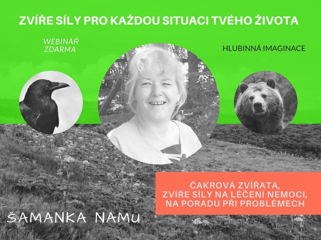 """<a href=""""https://samanka.paprsky1.com/webinar-hlubinna-imaginace-cakrova-zvirata-leceni-caker-dalsi-pouziti-hlubinne-imaginace/""""></a>"""